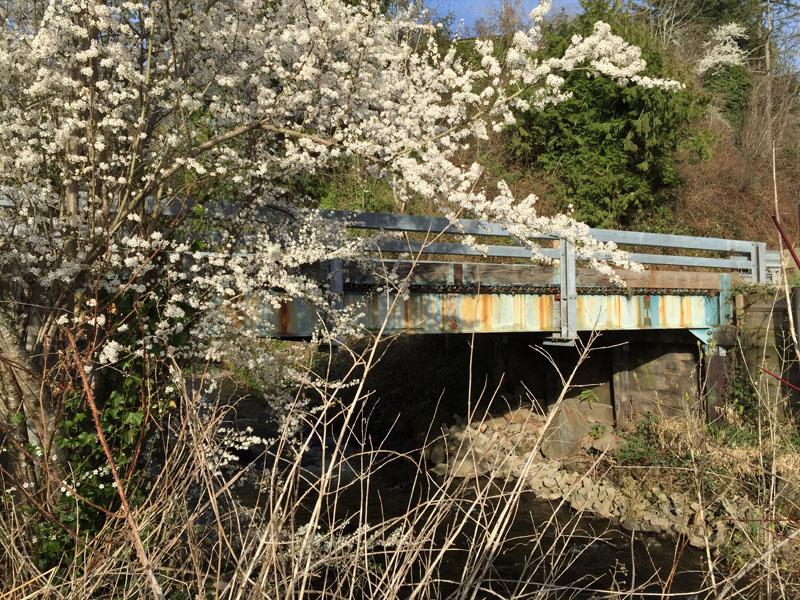 Bridge over Boise Creek at Mud Mountain Road/Lower Boise Creek Natural Area