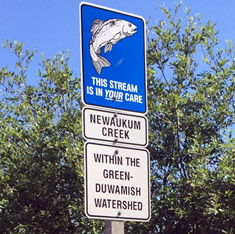 Newaukum Creek Sign