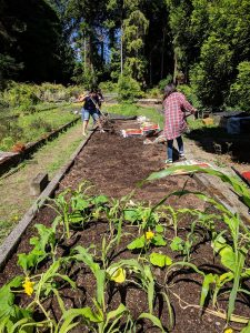 Na'ahIllahee-2018Cohort working on raised beds