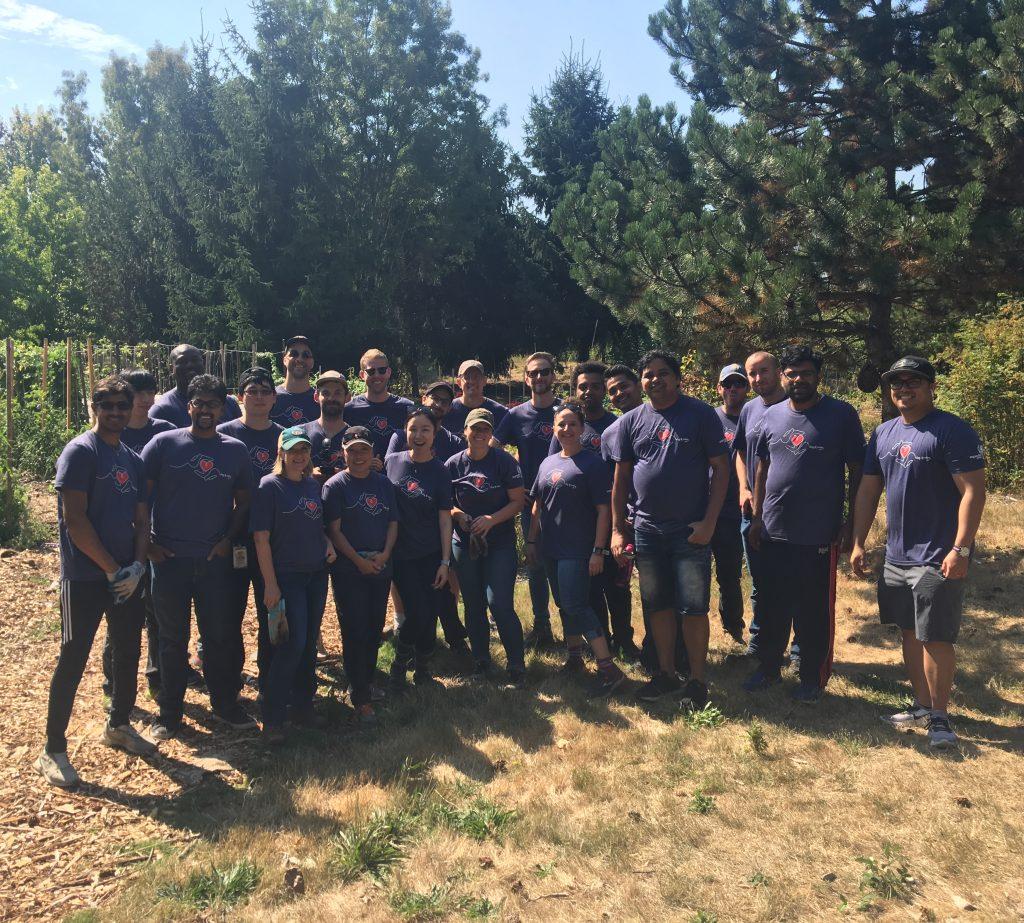 The Expedia volunteer team at City Soil Farm.