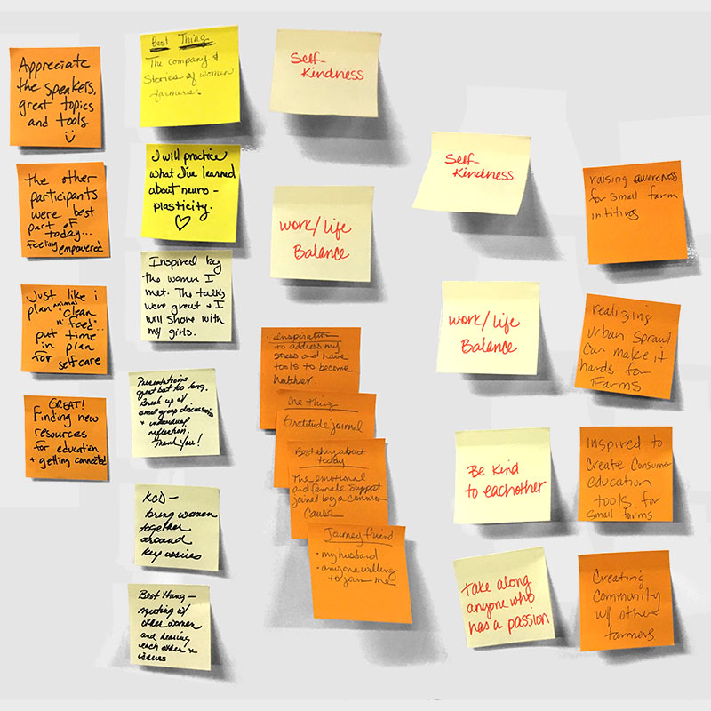 Post-It Notes of key take-away messages