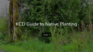 KCD Guide to Native Planting Online
