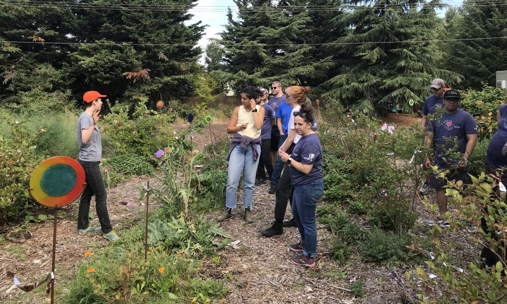 Expedia volunteers tour the City Soil Farm Garden